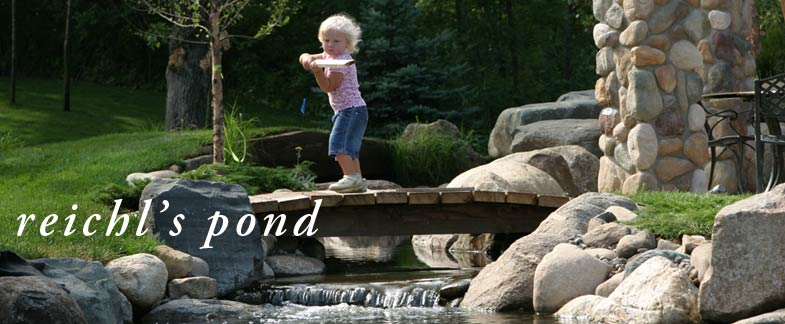 Introducing Reichl's Pond.