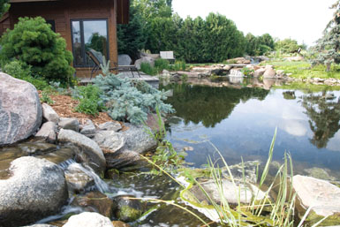 Image: Tier One Landscape swimmable pond.