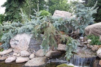 Image: Tier One Landscape specialty garden.