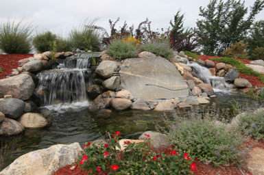 Waterfall and plantings